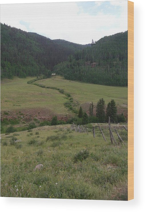 Nature Wood Print featuring the photograph Grazing Lands by Peter McIntosh