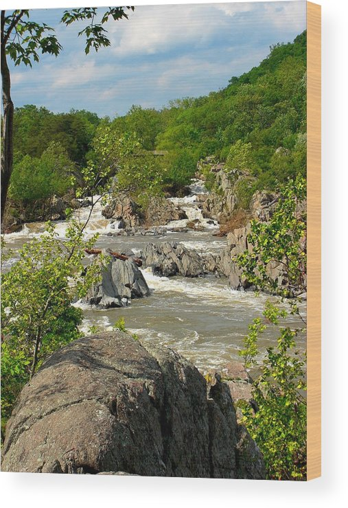 Waterfall Wood Print featuring the photograph Great Falls by Caroline Urbania Naeem