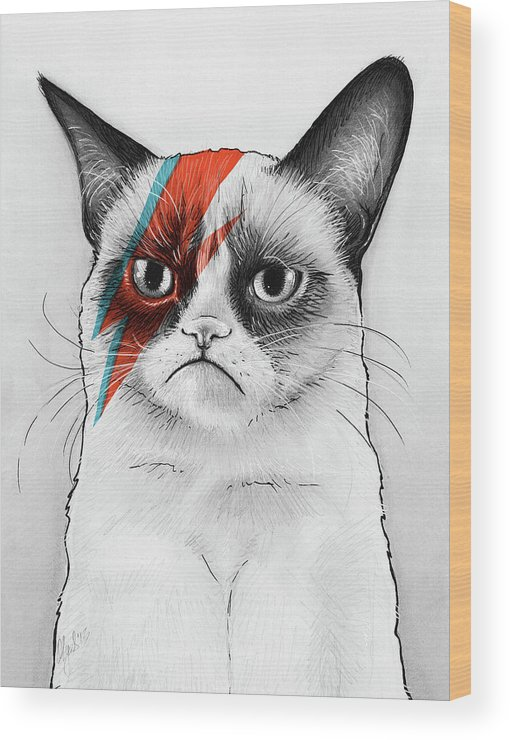 Grumpy Cat Wood Print featuring the drawing Grumpy Cat As David Bowie by Olga Shvartsur