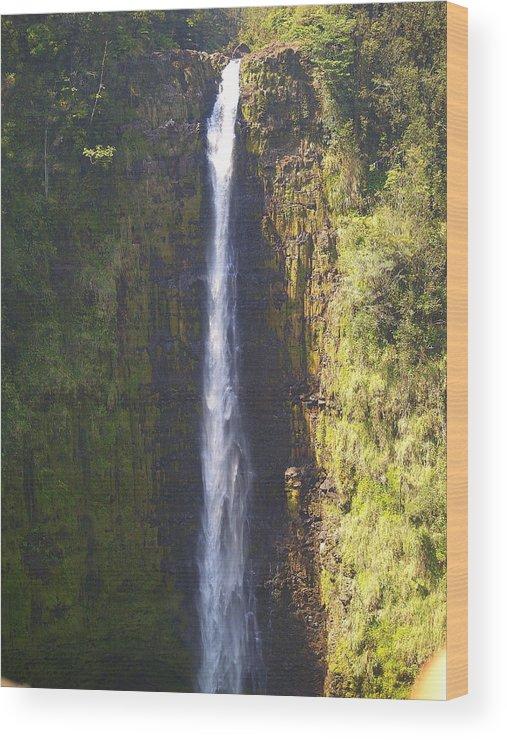 Kona Wood Print featuring the photograph Hawaiian Waterfall by Athala Carole Bruckner