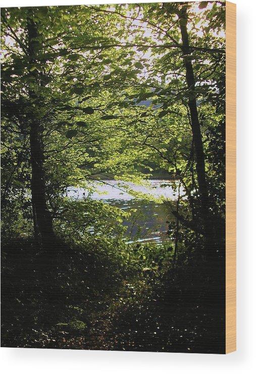Landscape Wood Print featuring the photograph Hazelwood Co. Sligo Ireland. by Louise Macarthur Art and Photography