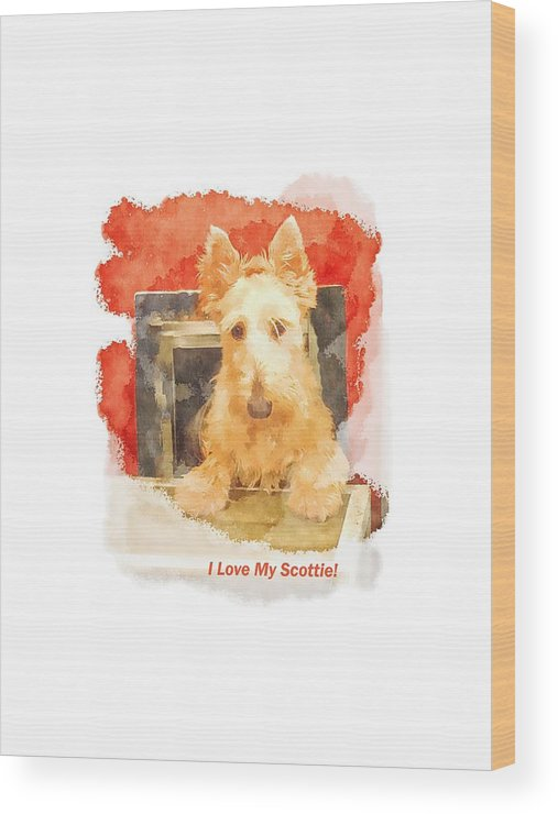 Scottish Terrier Wood Print featuring the photograph I Love My Scottie by Image Takers Photography LLC - Carol Haddon