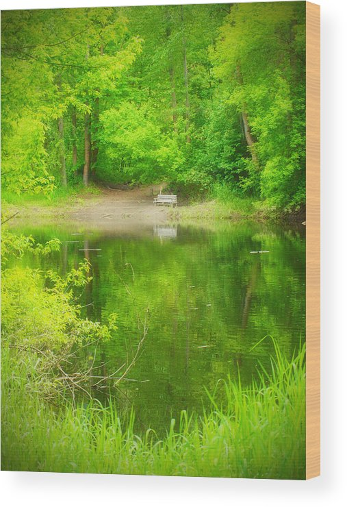 Bench Wood Print featuring the photograph In The Green by Tara Turner