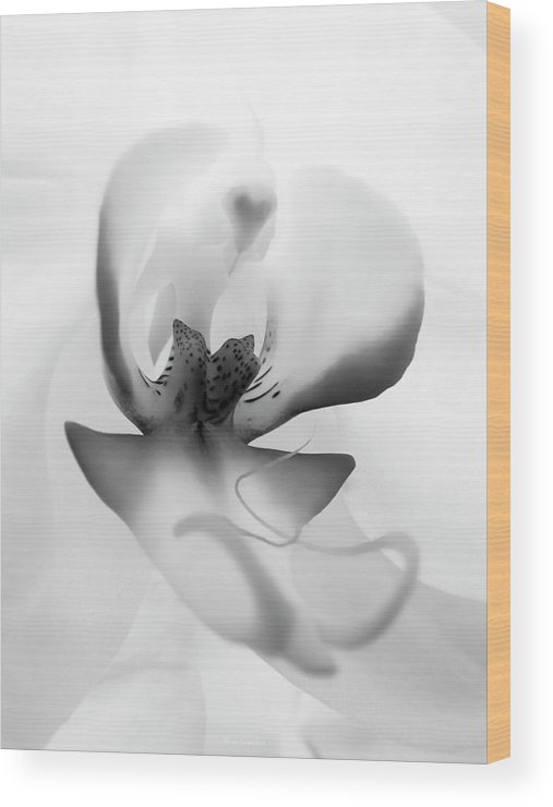 White Orchid Wood Print featuring the photograph Inside Orchid by Wim Lanclus