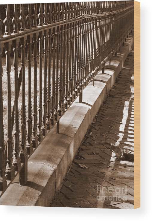 Wrought Iron Fence Wood Print featuring the photograph Iron Fence With Shadows by Carol Groenen