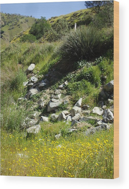 Flowers Wood Print featuring the photograph Kern River Canyon Road by Steve Ponting