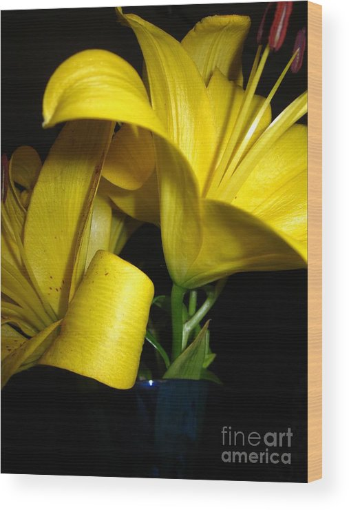 Wood Print featuring the photograph Lilliums By Two by Miss McLean