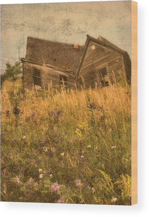 South Dakota Wood Print featuring the photograph Market Collapse by Tingy Wende