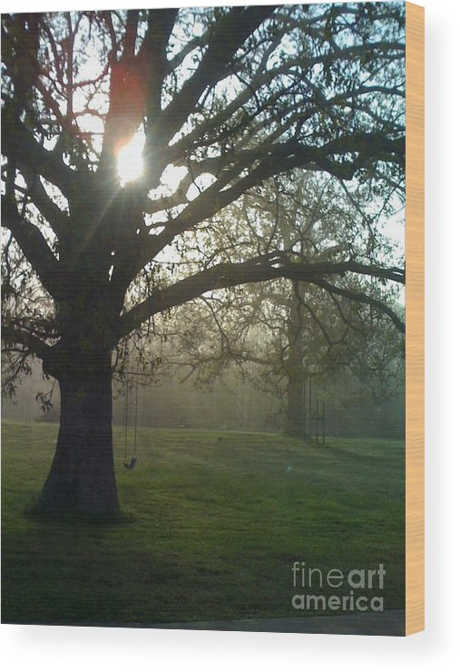 Mist Wood Print featuring the photograph Misty Morning by Nadine Rippelmeyer