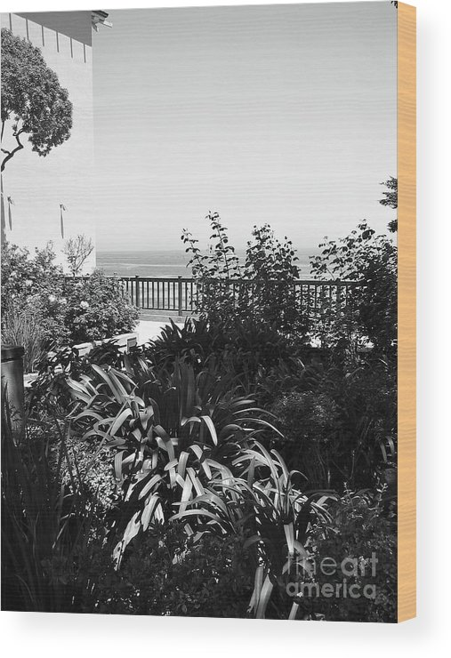 Ocean Wood Print featuring the photograph Monterey Gardens Overlooking The Bay by Amy Delaine