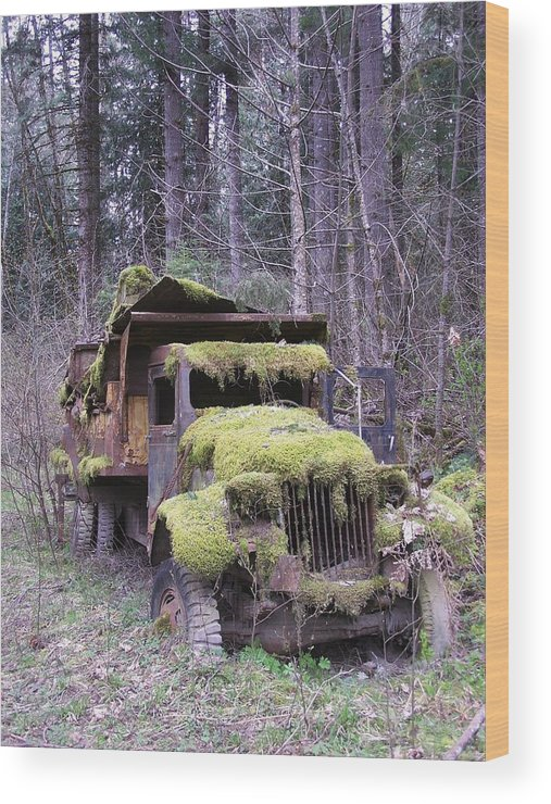 Truck Wood Print featuring the photograph Mossy Truck by Gene Ritchhart