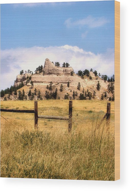 Plains Wood Print featuring the photograph Nebraska Buttes by Tingy Wende