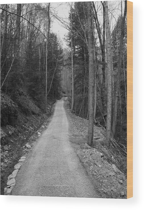 Landscape Wood Print featuring the photograph One Moment by Lindsay Clark