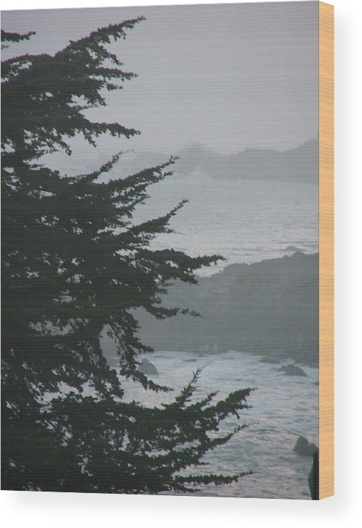 Sea Scape Wood Print featuring the photograph Pacific Grove Early Am by Donna Thomas