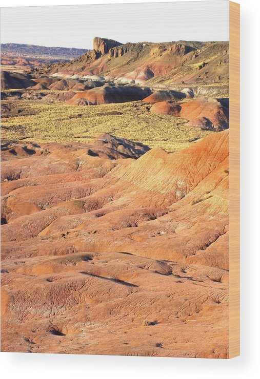 Photograph On Paper Wood Print featuring the photograph Painted Desert 1 by Patricia Bigelow