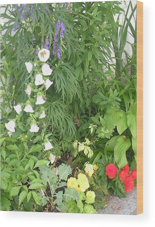 Garden Wood Print featuring the photograph Quebec Garden 2 by Nancy Ferrier