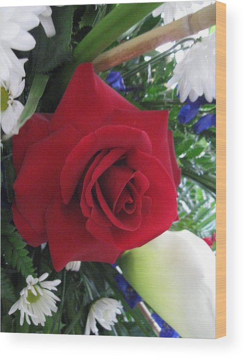 Rose Wood Print featuring the photograph Red by Jim Cooper