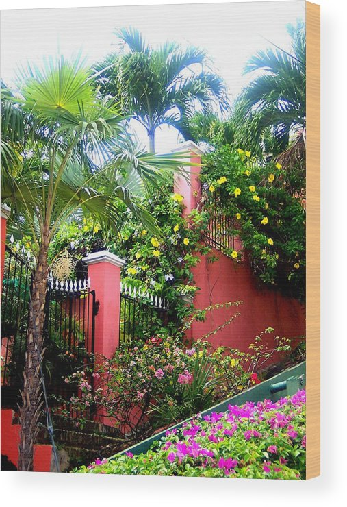 Wood Print featuring the photograph Red Wall And Palms by Caroline Urbania Naeem