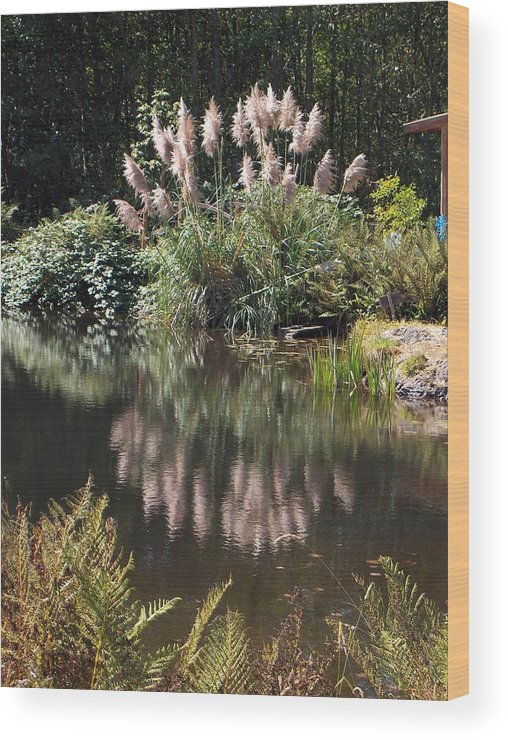 Pond Wood Print featuring the photograph Reflections by Denise Lowery