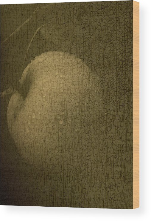 Texture Wood Print featuring the photograph Rembrandts Fruit by Tingy Wende