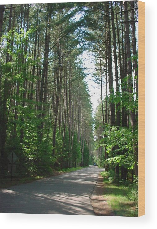 Fish Creek Wood Print featuring the photograph Roadway At Fish Creek by Jerrold Carton
