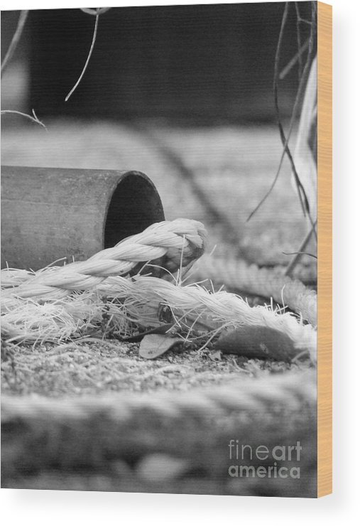 Black Wood Print featuring the photograph Rope And Piped by Jack Norton
