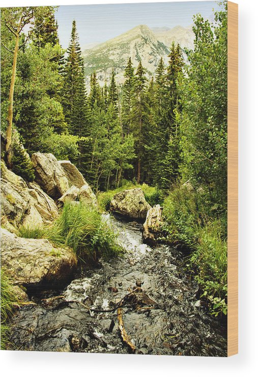 Colorado Wood Print featuring the photograph Running River by Marilyn Hunt