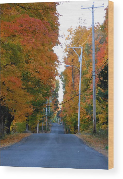 Autumn Scene With Road In Forest Wood Print featuring the painting Rural Road Running Along The Maple Trees In Autumn 1 by Jeelan Clark