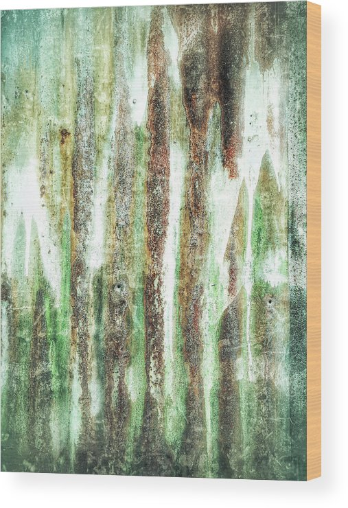 Abstract Wood Print featuring the photograph Rusty Metal Background by Tom Gowanlock