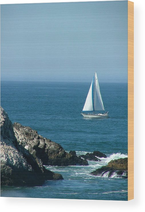 Boats Wood Print featuring the photograph Sail Away by Donna Thomas