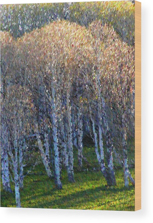 Landscape Wood Print featuring the mixed media Silver Trees by John-Marc Grob