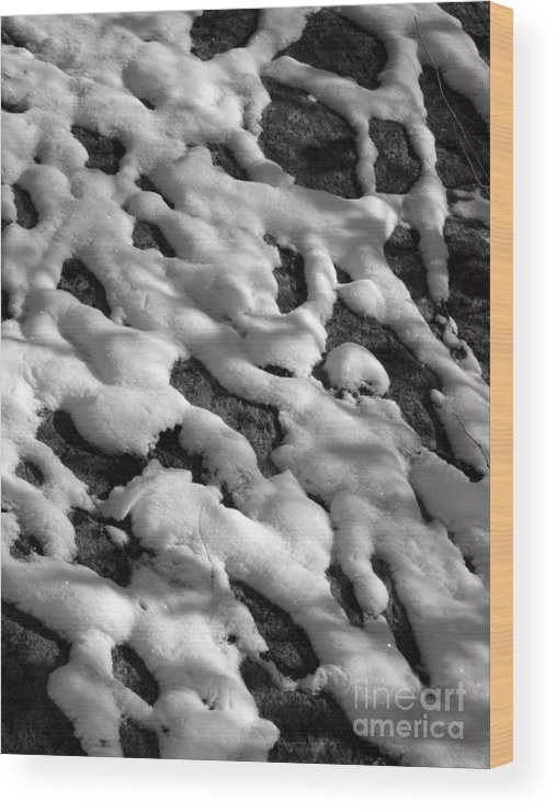 Black And White Wood Print featuring the photograph Snow People by Chad Natti