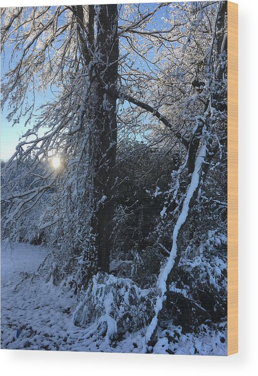 Glory Wood Print featuring the photograph Snow Sunrise 2 by Kevin Wheeler