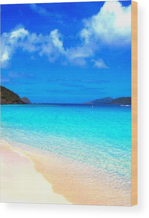 Ocean Wood Print featuring the photograph St. Thomas Heaven by Caroline Urbania Naeem