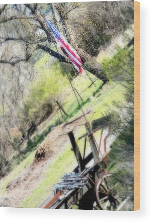 American Wood Print featuring the photograph Stands Alone by Melissa KarVal
