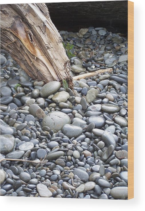 Stones Wood Print featuring the photograph Stones by Gene Ritchhart