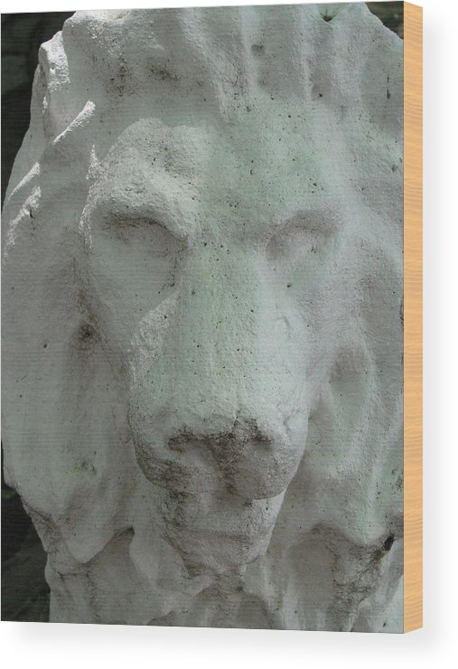 Leo Wood Print featuring the photograph Stonework Leo by Belinda Consten