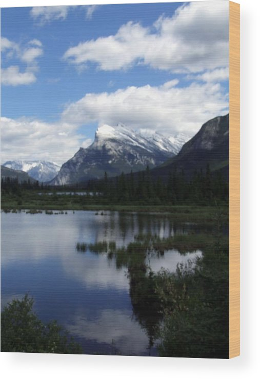 Landscape Wood Print featuring the photograph Summertime In Vermillion Lakes by Tiffany Vest
