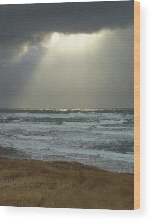 Sun Light Wood Print featuring the photograph Sun Whisper by Gene Ritchhart