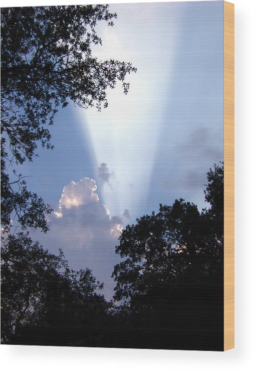 Sky Wood Print featuring the photograph Sunbeam by Nicole I Hamilton