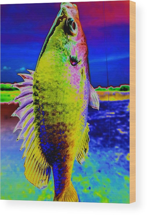 Surreal Fish Dream Wood Print featuring the photograph Surreal Fish Dream by Beth Akerman