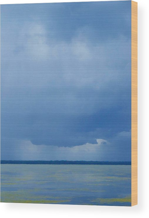 Blues Wood Print featuring the photograph The Blues by Judy Waller