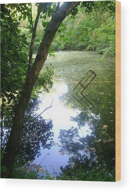 Pond Wood Print featuring the photograph The Pond by Scarlett Royal