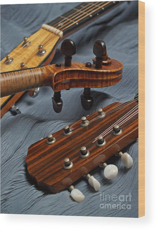 Guitar Wood Print featuring the photograph Three Musical Instrument Heads On Blue by Anna Lisa Yoder