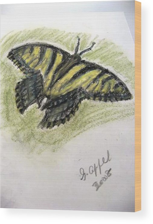 Tiger Butterfly Wood Print featuring the drawing Tiger Butterfly by Gloria M Apfel