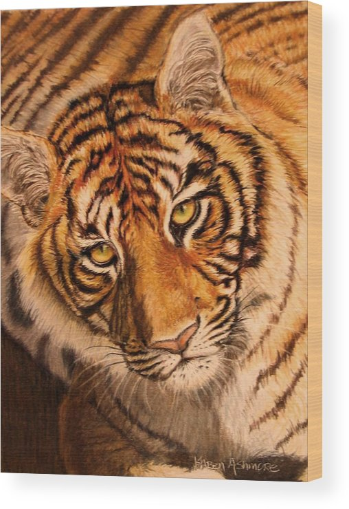 Tiger Wood Print featuring the drawing Tiger by Karen Ilari