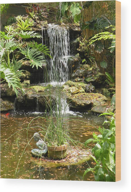 Pond Wood Print featuring the photograph Tropical Paradise by Rosalie Scanlon