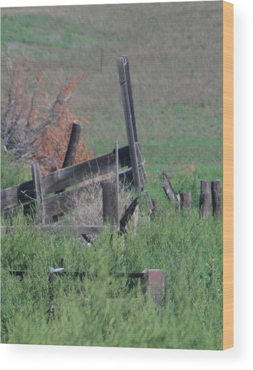 Farm Wood Print featuring the photograph Untended Fences by Margaret Fortunato