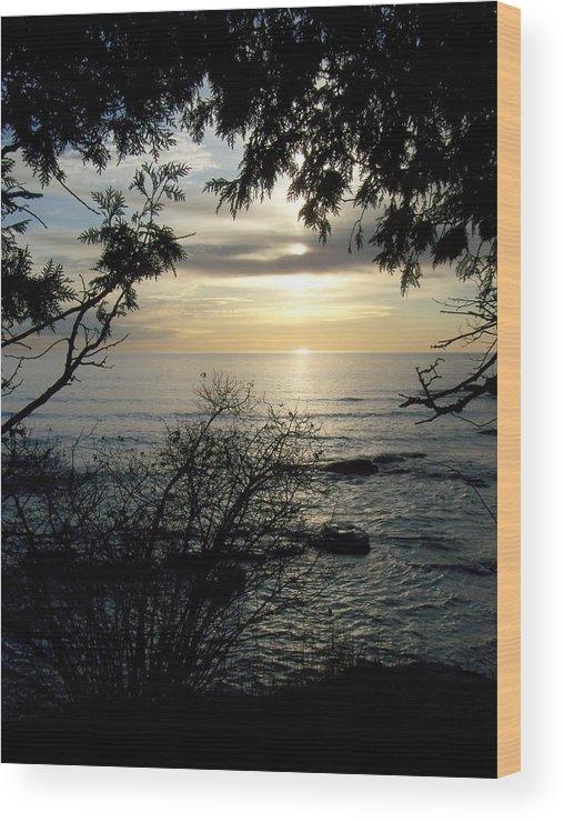 Washington Island Wood Print featuring the photograph Washington Island Morning 4 by Anita Burgermeister