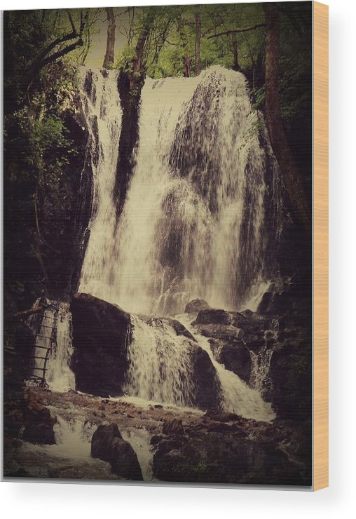 Waterfall Wood Print featuring the photograph Waterfall by Filip Mazev